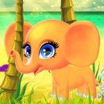 הפיל השמח - משחק טיפוח והלבשה כיפי