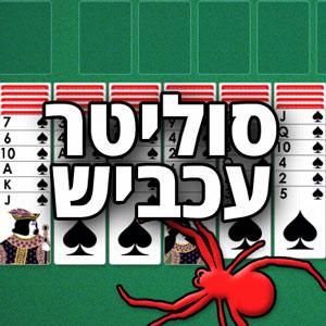 סוליטר עכביש אונליין - משחק קלפים