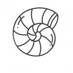 דף צביעה של קונכיה בים